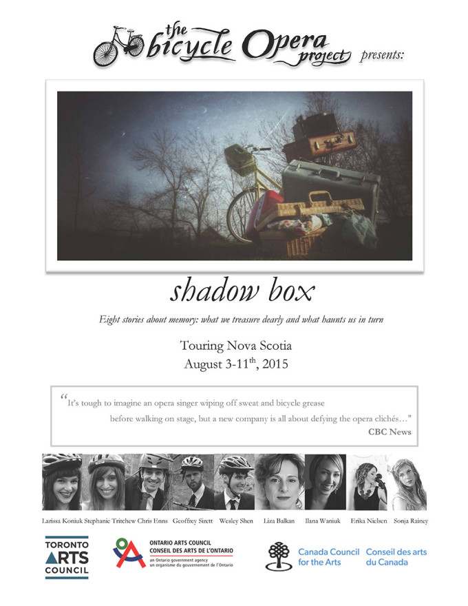 shadowboxposter2015